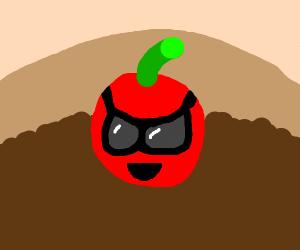 Elite Cherry