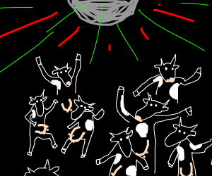 Lots and lots of dancing cows