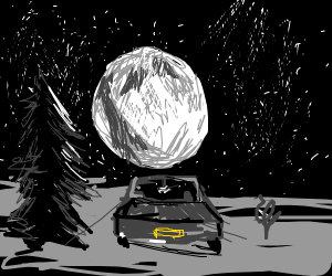 Driving past a tree in the moonlight