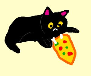 A black cat eats pizza