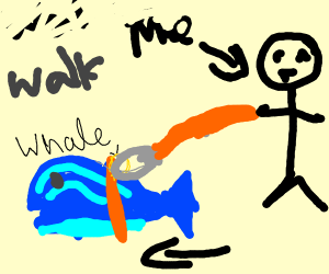 Taking my whale for a walk