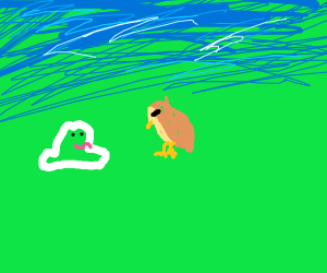 the frog and the bird pokemon