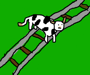 Cow crossing the Tracks