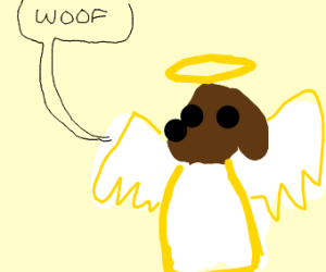 angel dog (the goodest boy)