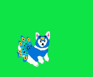 A cute dog in a peacock costume