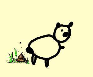 Bear crappin