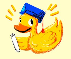 duck did a graduate