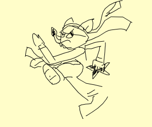 Weird raccoon ninja