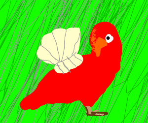 Parrot with clam shell wings