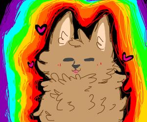 cats aura is rainbow