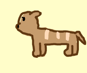 bread dog