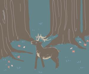 Deer in deep forest