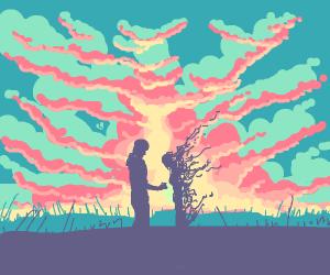 beautiful sun-set proposal disintegrates girl