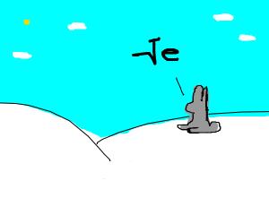 Snow bunny saying ''ye?''