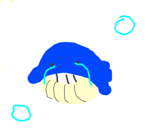 Crying wailmer