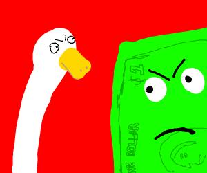 duck vs buck