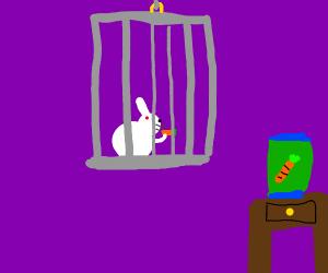 rabbits eat carrots