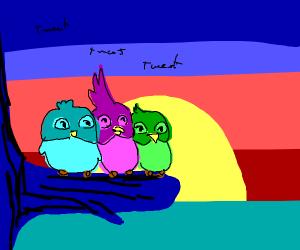 Three birds sing to the sun