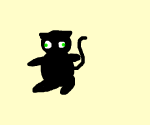 dislessic cat