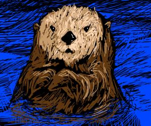 Little otter floating down the stream