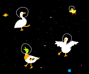 Ducks in SPACE!