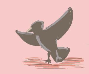 bird ascends