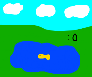 fish in a pond :0