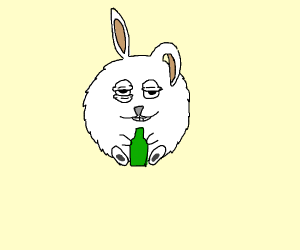 Fat rabbit drinking beer