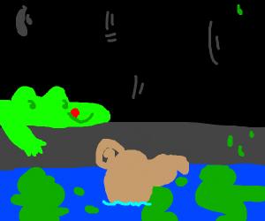 Dapper rollie pollie bug drowns in sewer