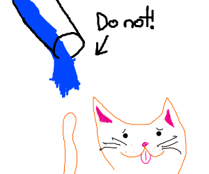 don't pour water on the cat!
