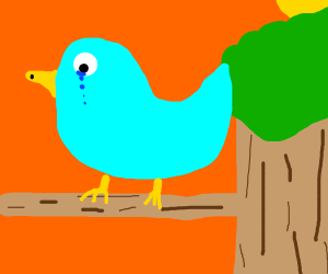 sad blue bird