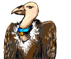 Pet Vulture