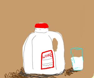 whole milk