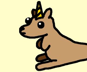 Unicorn kangaroo