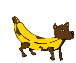 Banana doggo