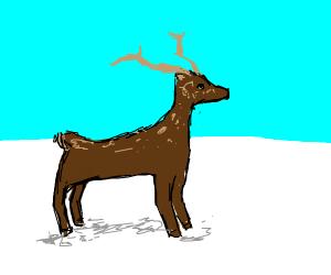 Deer in a snow feild