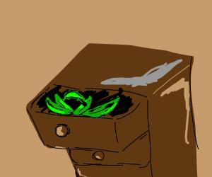 Platanos verdes en un cajón