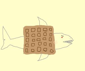 Waffle shark.