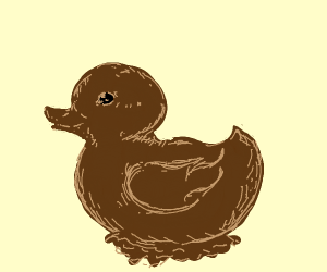 chocolate duckling