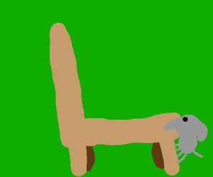 Smol Elephant Climbs chair