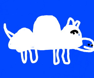 Dog Cloud