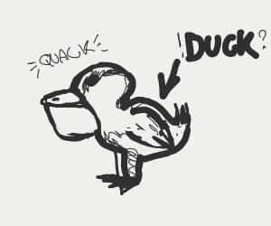 Duck with a pelican beak