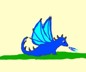blue winged-dragon