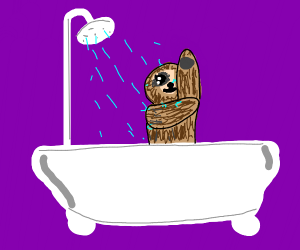 sloth bathing