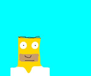 Minecraft homer