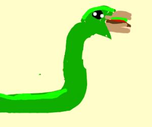Snake eating a burger