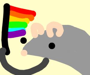 Gay Rats
