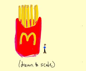 huge mcdonalds fries