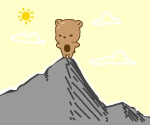 Cute bear on top of mountain