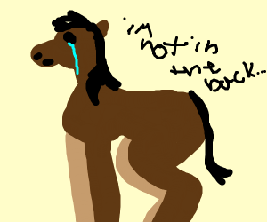 the horse aren't in the back (old town road)